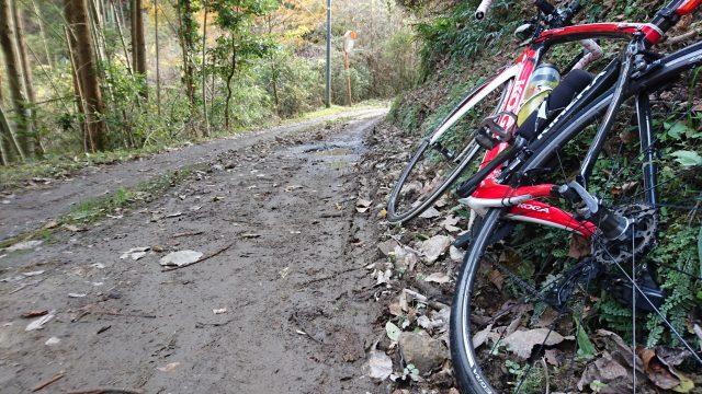 南房総の紅葉とグラベルロードサイクリング