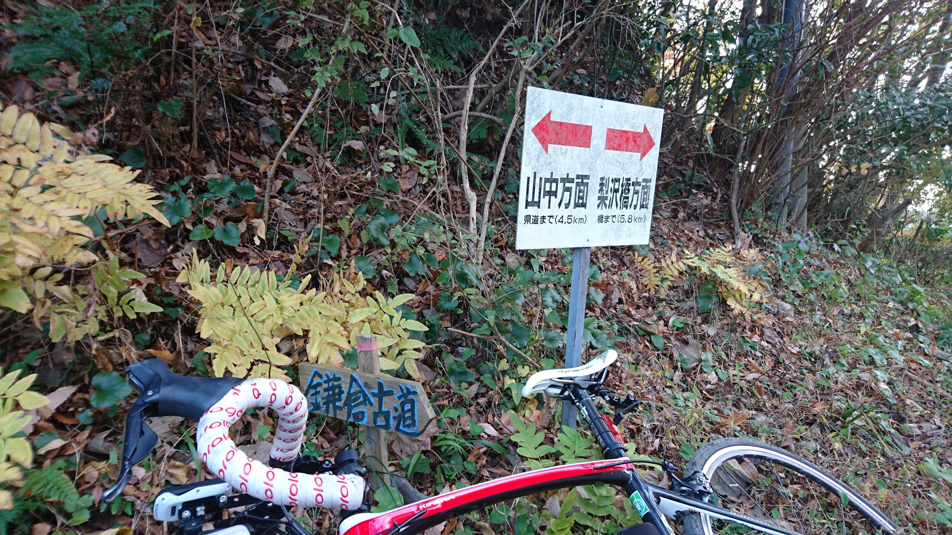 「鎌倉古道」が出てきました?千葉なのに?