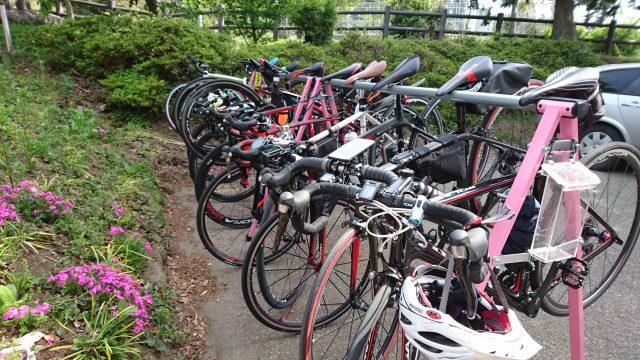 GWにビギナー向けのサイクリングを開催。