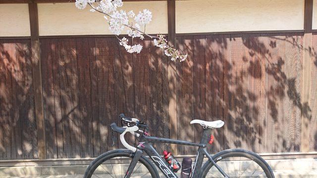 鎌倉サイクリングに行って来ました