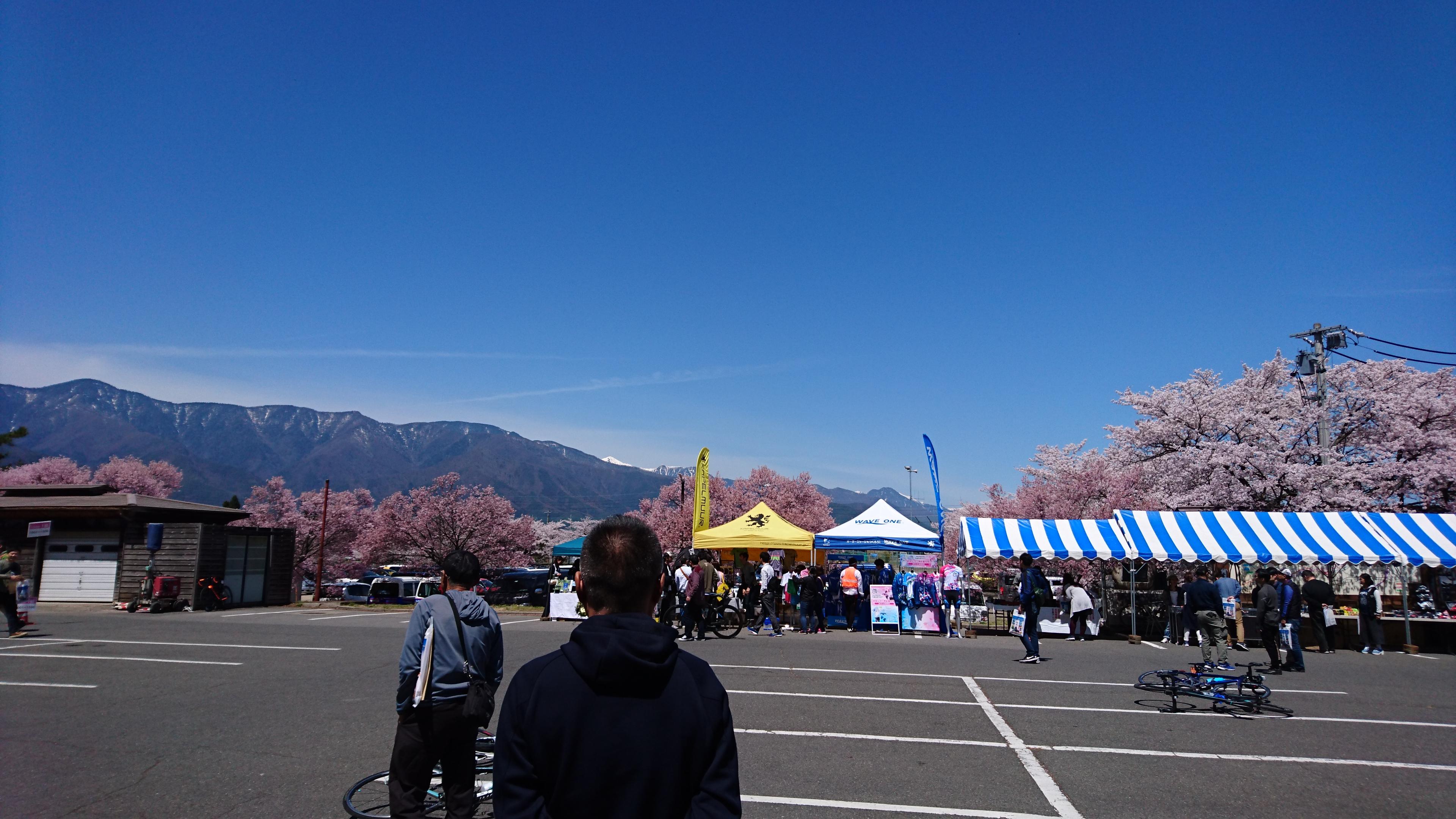 桜のアルプスあづみのセンチュリーライド